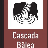 Indicator rutier de informare turistică T7 Cascadă