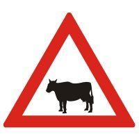 Indicator rutier avertizare Animale domestice A25